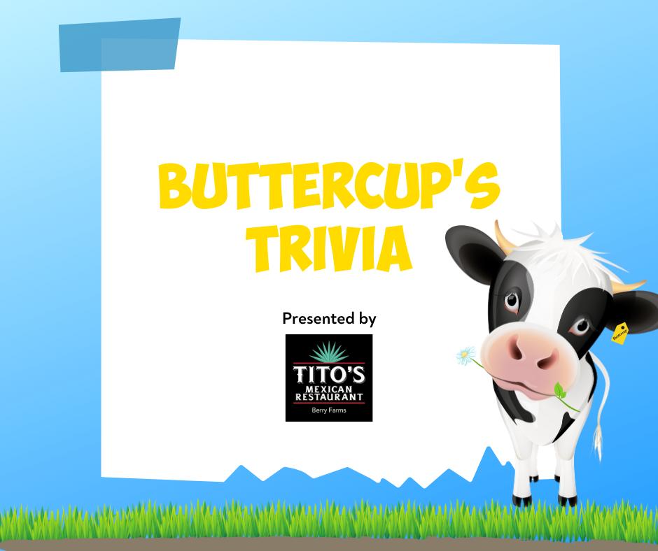 Buttercup's Trivia link