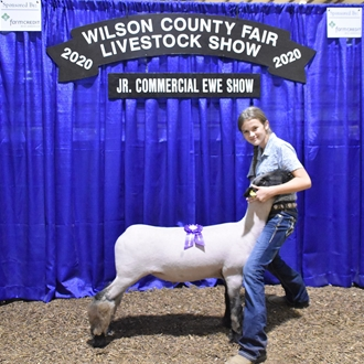 Day 8 - Livestock Shows 2020