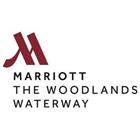 The Woodlands Waterway Marriott