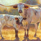 two longhorn cows done with pastel on primed board