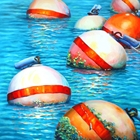 Buoys in the water