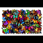 Hand drawn, hand cut 3D paper butterflies made primarily using illustrators ink & acrylic paint on archival paper & film