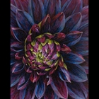 fine art paper mosaic of a flower