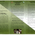 Task Force Brochure