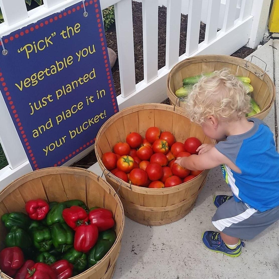 KVLS Agricultural Education Fund