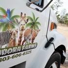 Eudora Farms, Petting Zoo
